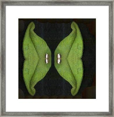 Decorative Green In The Dark Framed Print by Pepita Selles
