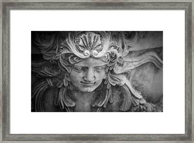 Decorative Planter Framed Print by Teresa Mucha