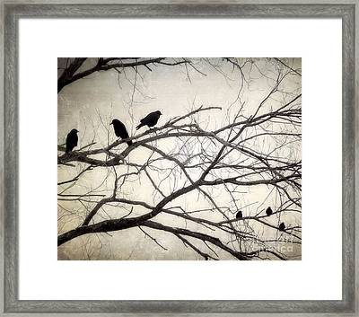 Decree At Sunset Framed Print by Angie Rea