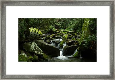Deep In The Forest Lies A Waterfall   Framed Print by Glenn Lawrence
