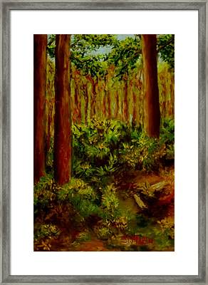 Deep In The Pines Framed Print by Annie St Martin
