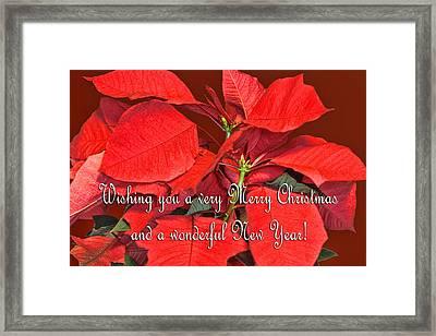 Deep Red Poinsettia Christmas Card Framed Print by Linda Phelps