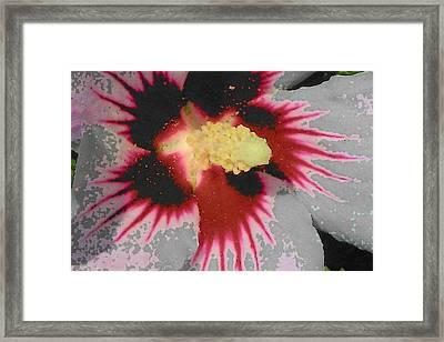 Deep Throat Framed Print by Wide Awake Arts
