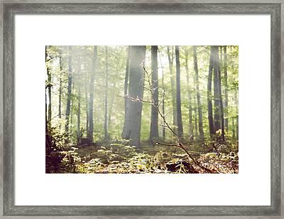 Deep Framed Print by Violet Gray