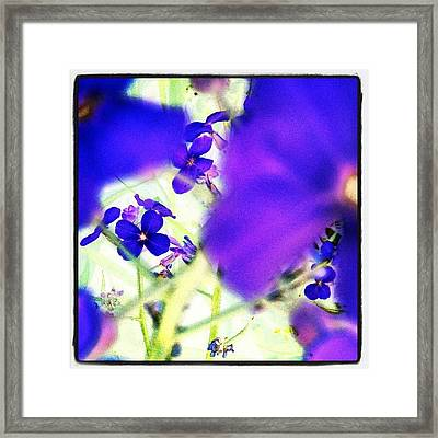 Deep Violets #abstract #android Framed Print