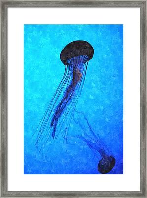 Deepsea Serenity Dswc Framed Print
