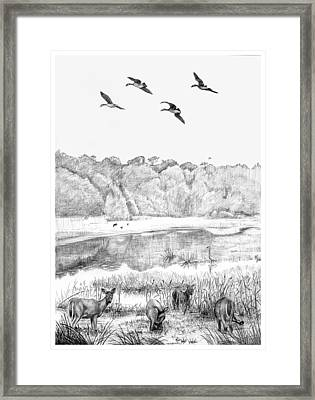 Deer And Geese - Lake Mattamuskeet Framed Print by Tim Treadwell