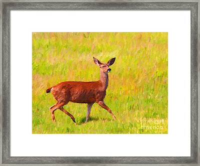 Deer In The Meadow Framed Print by Wingsdomain Art and Photography