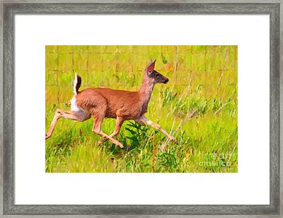 Deer Prancing In The Field Framed Print by Wingsdomain Art and Photography