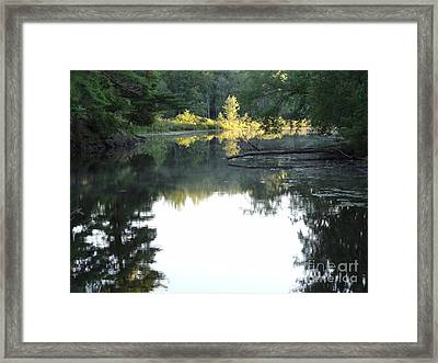 Deer River In Early Sun Framed Print