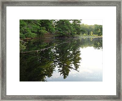 Deer River Reflection Framed Print