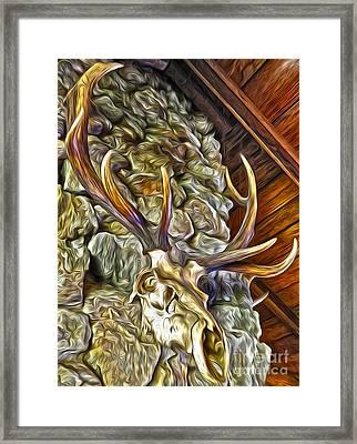 Deer Skull Framed Print by Gregory Dyer