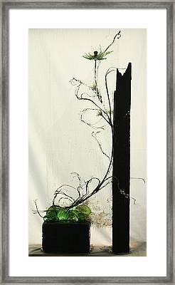 Defrost Framed Print by Mariann Taubensee