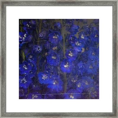 Delft Blues Framed Print