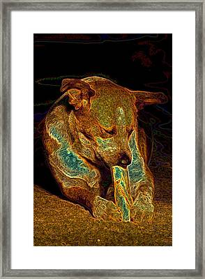 Delicious Bone Framed Print by One Rude Dawg Orcutt