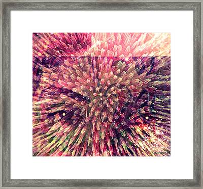 Delight With The Beauty Of What I Haven't Been Framed Print by Paulo Zerbato