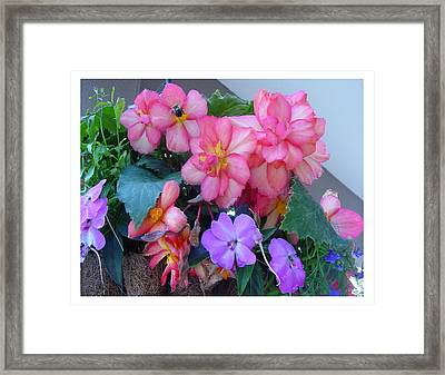 Framed Print featuring the photograph Delightful Potpourri Of Pastels by Frank Wickham