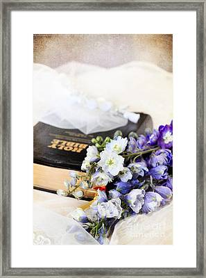 Delphiniums And Bible Framed Print by Stephanie Frey