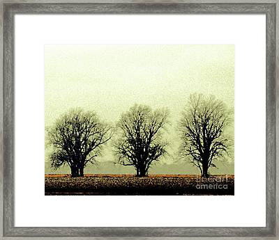 Delta Dust Framed Print by Lizi Beard-Ward
