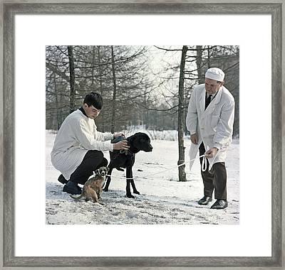 Demikhov's Laboratory Dogs, 1967 Framed Print by Ria Novosti