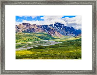Denali National Park, Alaska Usa Framed Print