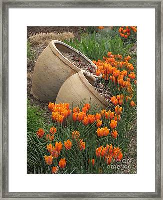 Denver Botanic Planters Framed Print by Michelle H