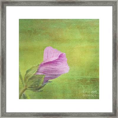 Deploiement - 01ct02b Framed Print by Variance Collections