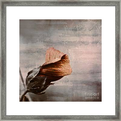 Deploiement - 05ft01b Framed Print by Variance Collections