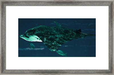 Depths Of Danger Framed Print by DigiArt Diaries by Vicky B Fuller