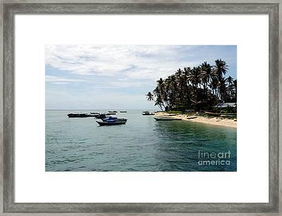 Derawan Island Framed Print by Antoni Halim