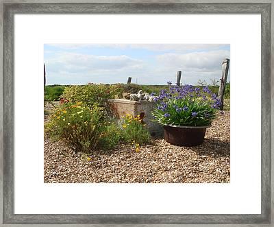 Derek Jarmans Garden Dungeness Framed Print by Frank Pearson