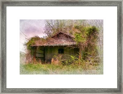 Derelict Shed Framed Print by Susan Isakson