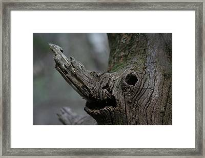 Derg Corra Framed Print by Sean Green