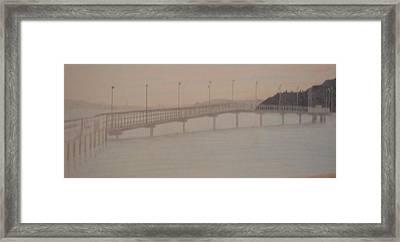 Des Moines Marina 1 Of 3 Framed Print
