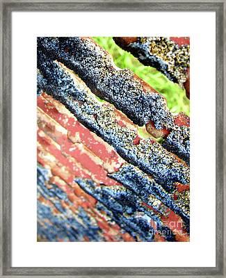 Descent Framed Print by Mark Holbrook