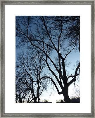Desendants Framed Print by Dan Stone
