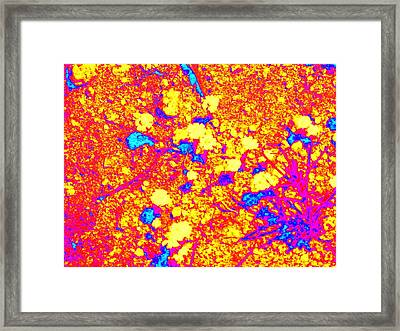 Desert Abstract Framed Print by Claire Plowman