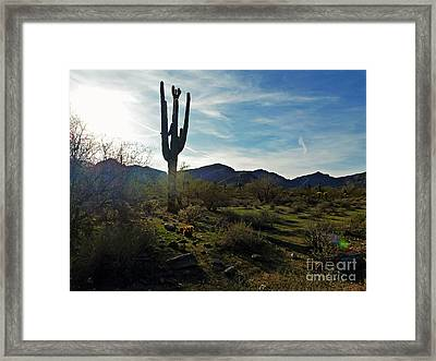 Desert Afternoon Framed Print by Methune Hively
