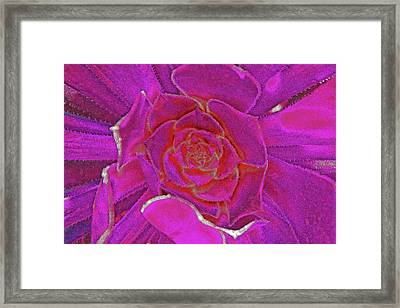 Desert Bloom Framed Print by James Mancini Heath
