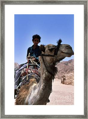 Desert Locomotion Framed Print by Heiko Koehrer-Wagner