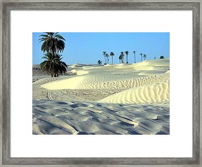Desert Looking So Cool Framed Print by ilendra Vyas