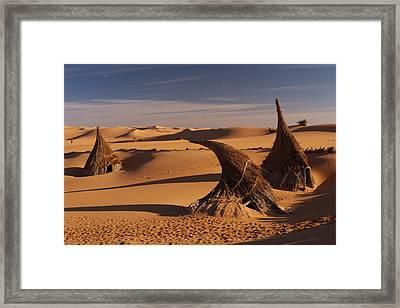 Desert Luxury Framed Print