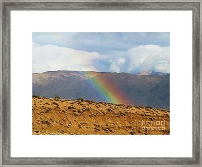 Desert Rainbow Framed Print by Michele Penner