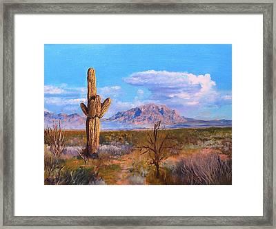 Desert Scene 4 Framed Print