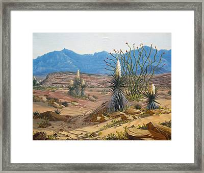 Desert Streams Framed Print by Rick Mittelstedt