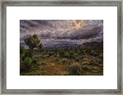 Desert Sunset Framed Print