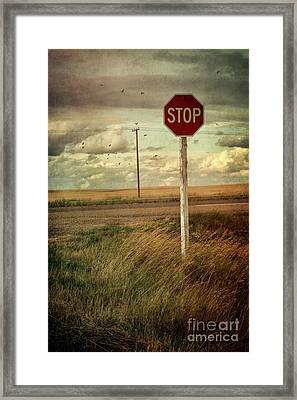 Deserted Red Stop Sign On The Prairies Framed Print by Sandra Cunningham