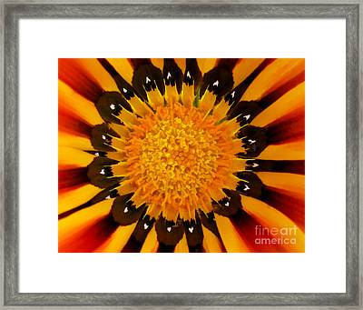 Design In Creation Framed Print