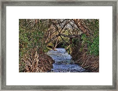 Desolation Creek Hdr Framed Print