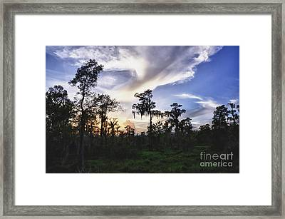 Destrehan Swamp Sunset Framed Print by Jeanne  Woods